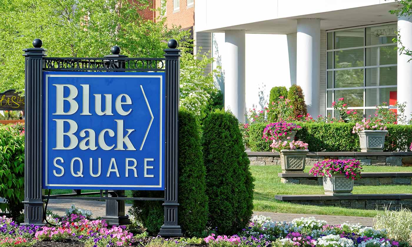 Blue Back Square